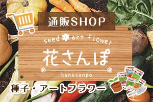 花さんぽ種子造花